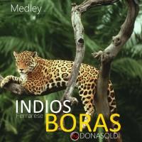 Indios – Boras